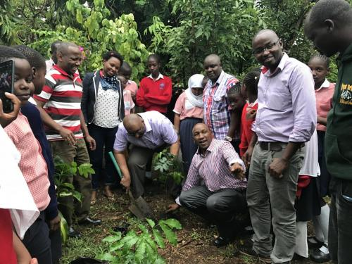 Tree planting session at Nyali school in Mombasa